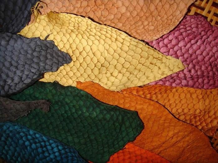 Resultado de imagem para imagens de couro de peixe